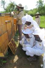 Children in beekeepers suits had great fun