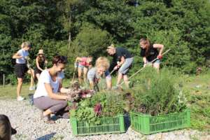 Building a small enviromental center