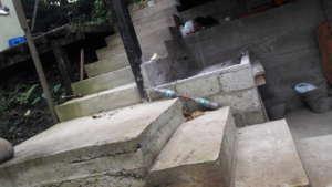 Concrete Reconstruction Skills