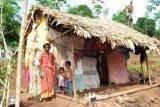 support an indigeneous women  in kanyakumari,ndia