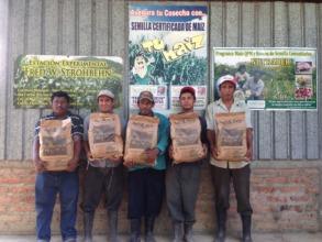 Ochomogo farmers holding the QPM they'll plant
