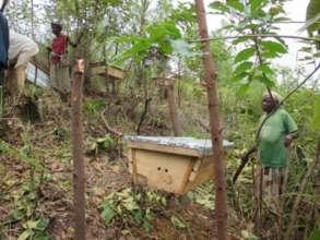 Create Income for 100 Displaced Batwa in Uganda