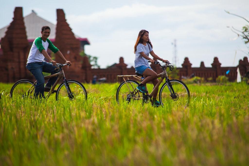 East Bali Bamboo Bikes Social Enterprise Appeal