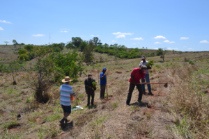 Landless farmers planting on the San Antonia site