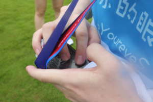 Reading the Finishing Medals by finger
