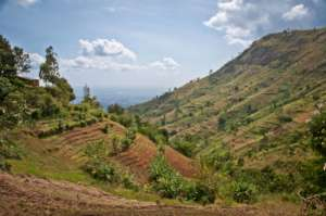 The Uluguru Mountains where trees are planted.