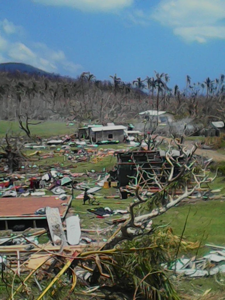 Happy Chickens for Fiji Cyclone Disaster Hit Areas