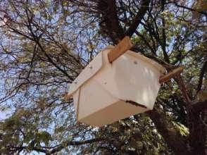 Beehive on smallholders farmland in the Copperbelt