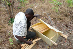 Assembling a new beehive