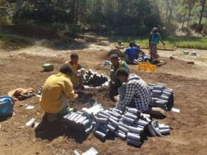 Our team prepares the pots for planting