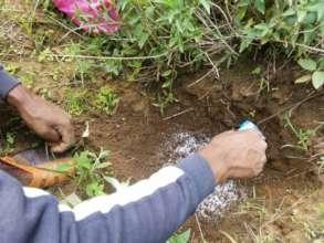 Small gel balls release water when soil is dry