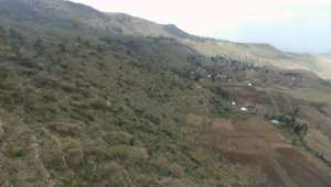 Degraded dry Afromontane forest in Tigray