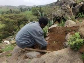 Community worker planting tree seedlings