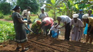 On site training in sustainable agriculture