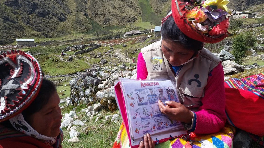 Support 55 Peruvian Community Health Workers