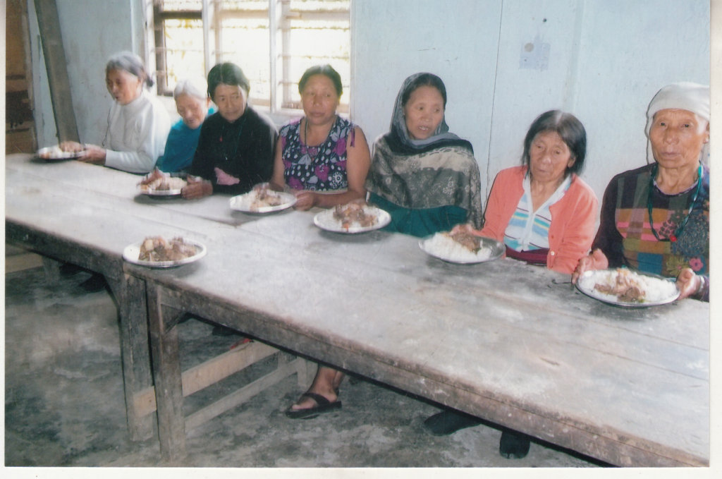 Multi-Care Place For Old Widow Women