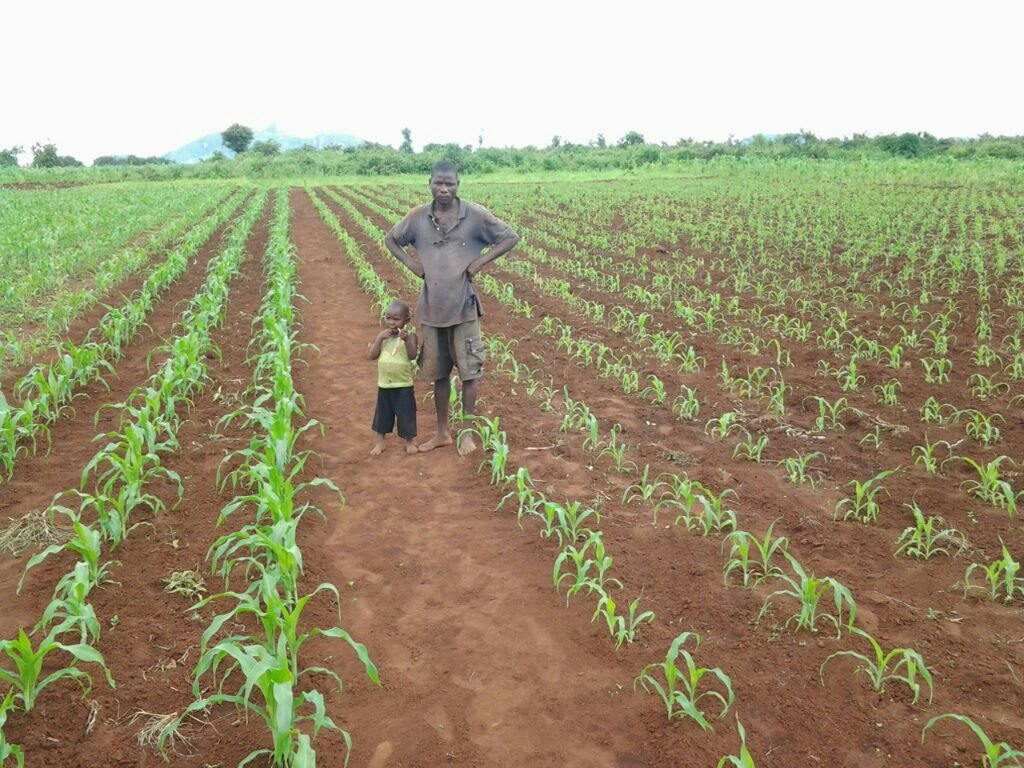 Increase Smallholders' Agricultural Production
