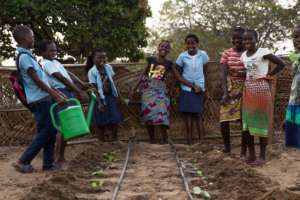 School kids learning agriculture