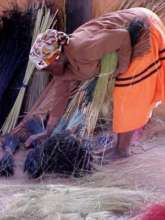 Collecting grass fiber in Swaziland