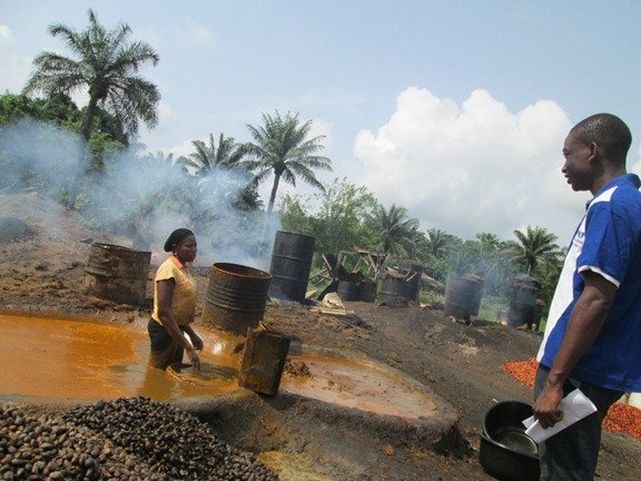 Income Generation Activities for Rural Nigerians