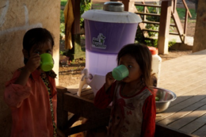 Distribution of water filter