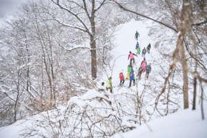 Snowshoeing adventure in 2020