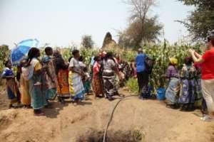 Our volunteers in Mangochi