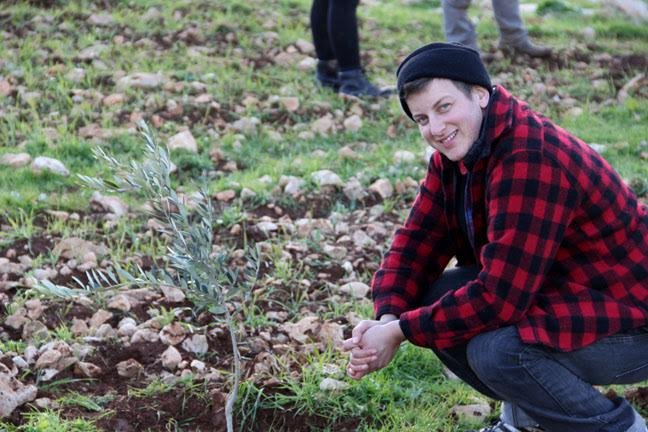 Plant a Tree in Palestine