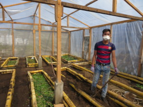 creating healthy soil by layering organic material