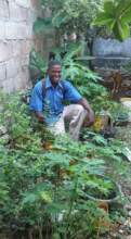 Tree Angels for Haiti: A Man & His Vegetables