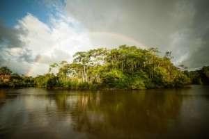 Maijuna ancestral lands. Photo by B. Griffiths.