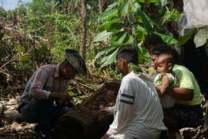 Family Harvesting Honey