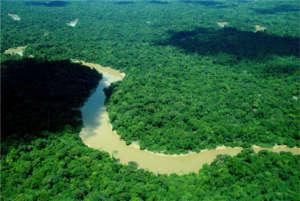 Maijuna River