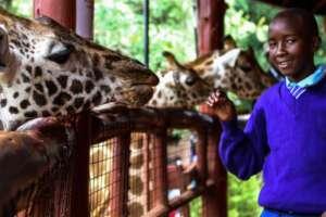 Jitegemee students visit Nairobi's Giraffe Center