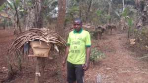 An established apiary by a trained Youth