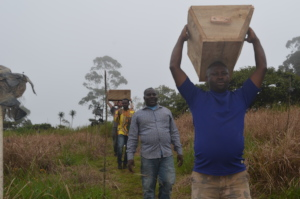 Participants transporting hives for installation