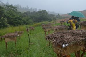 Installed Hives at the Guzang watershed