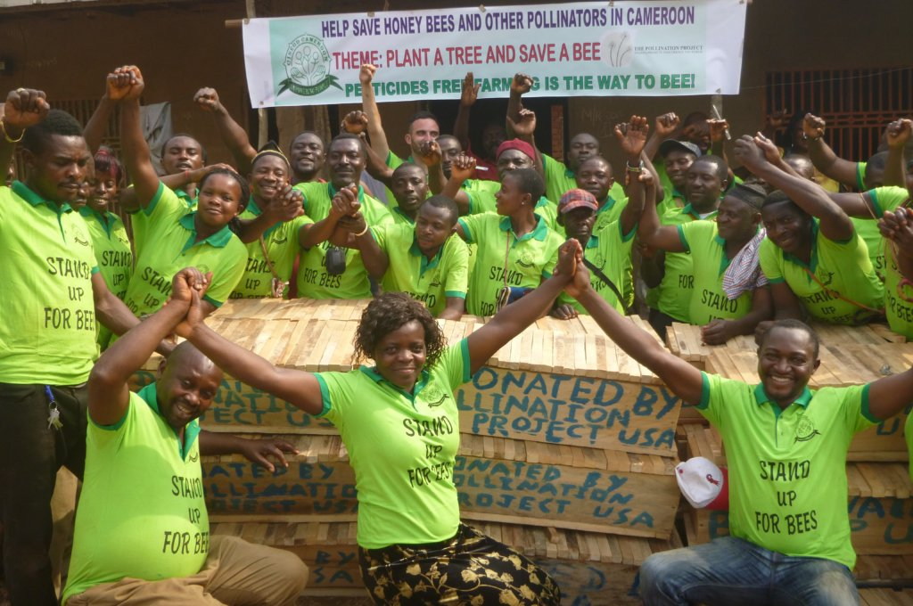 Help 50 Youths Save Bees and Beekeping in Cameroon