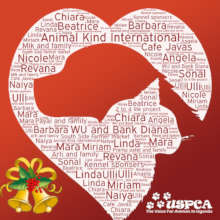 Happy Holidays from the USPCA to AKI donors!
