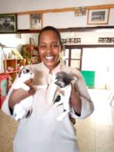 Yvonne adopted 2 Haven kitties in May