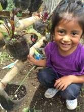 In-School Garden