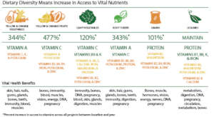 Dietary Diversity