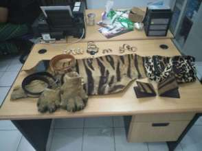 Tiger parts for sale