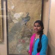 @ Salarjung Museum
