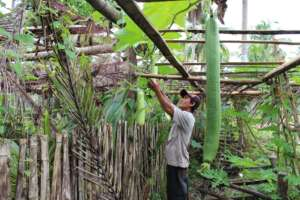 Mindanao Sanitation and Food Security Project