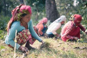 Life in Rural Nepal