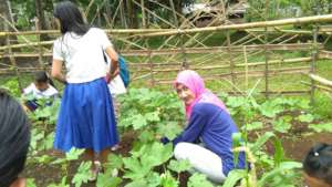 School principals harvest along with students