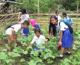 Students tending to garden
