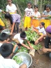 Manilop ES students gather to harvest