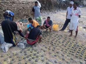 Restore Corals for 400 Fisherfolks in Wasini
